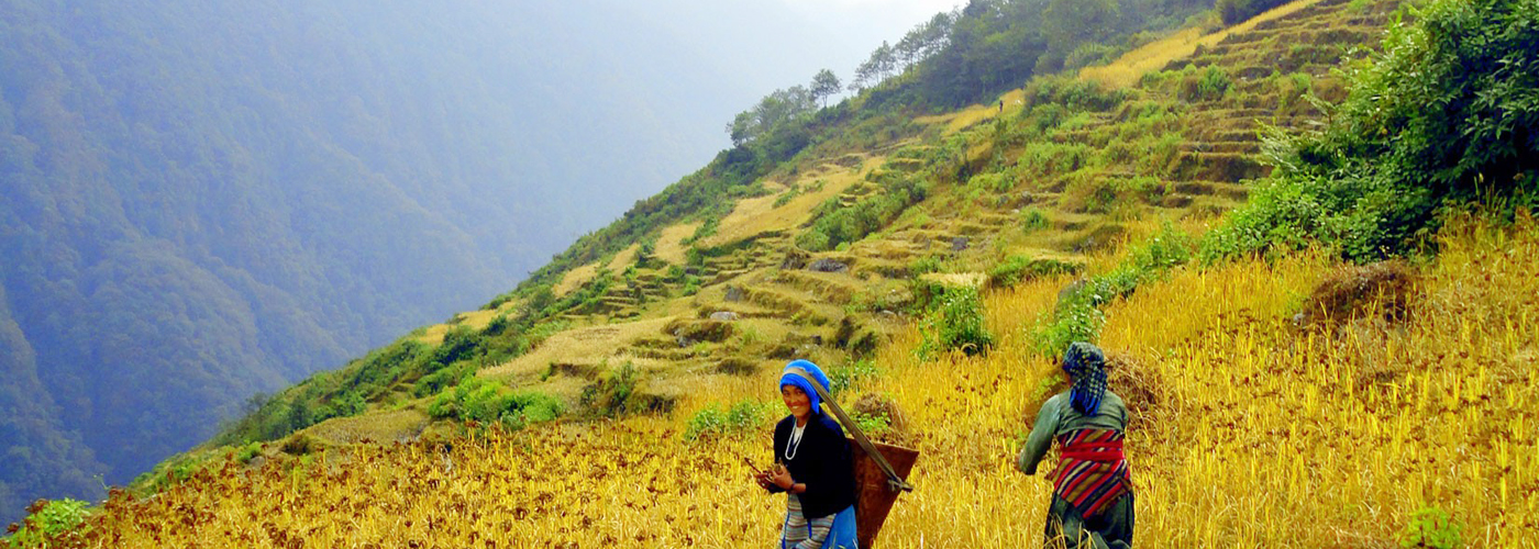 Arun Valley Trek